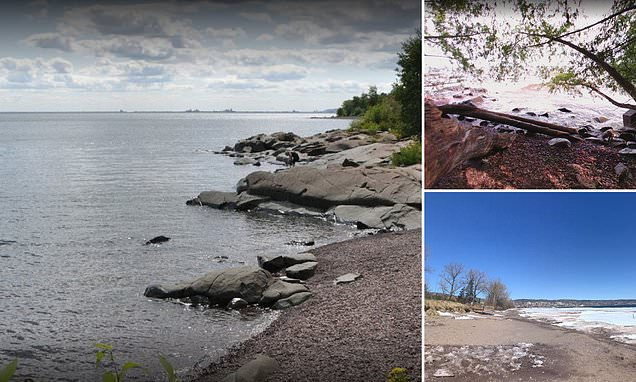 Minnesota scientists find coronavirus in samples of beach water for the first time